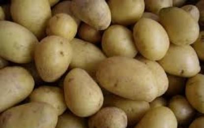 Venta ilegal de patatas en una furgoneta