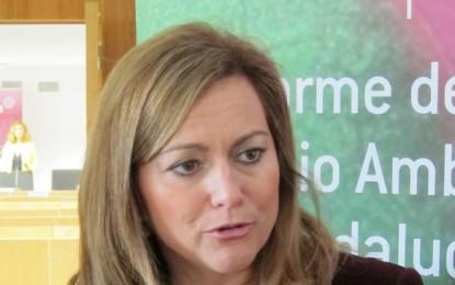 La Junta de Andalucía garantiza que las obras en barriadas vulnerables estarán ejecutadas en 2015, también en La Línea