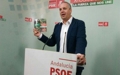 El PSOE pide explicaciones al PP por la corrupción y exige la dimisión del alcalde de Chipiona
