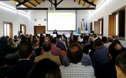 La mesa de contratación municipal resuelve la adjudicación de los proyectos de remodelación de zonas verdes en el parque Princesa Sofía y la asistencia técnica de proyectos EDUSI