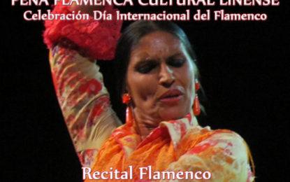 Celebración del Día Internacional del Flamenco, en la Peña Flamenca de La Línea, este sábado