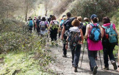 Organizada una actividad de senderismo para los usuarios del programa de mayores
