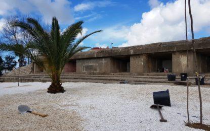 Parques y Jardines y Cultura adecentan el entorno del bunker de la avenida del Mar
