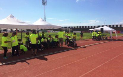 350 alumnos han participado en la carrera solidaria organizada por el Virgen del Amparo en el Estadio Municipal