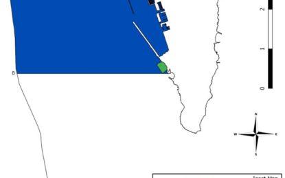 Anunciada la creación de una Zona de Protección de Delfines en el norte de BGTW dentro de la Bahía de Gibraltar