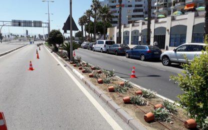 Parques y jardines realiza trabajos de ornamentación en el área de la portada de feria y la frontera