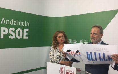 """El PSOE rechaza """"la mentira como método político del PP y lamenta el estilo asustaviejas de Sanz"""""""
