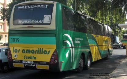La concesionaria del servicio de autobuses inicia la renovación de la flota de vehículos con la incorporación de un nuevo autocar