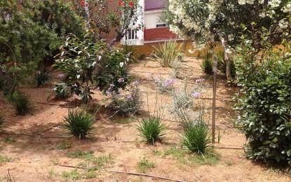 El Consistorio algecireño acomete mejoras en varias zonas verdes de Algeciras