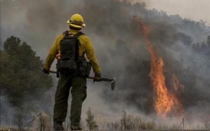 El Servicio de Extinción de Incendios desarrolla dos programas en la Oferta Educativa Municipal con la participación de más de 1.500 alumnos
