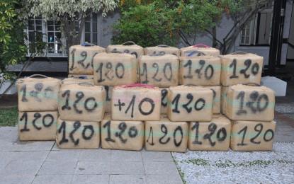 Incautación de droga entre la Royal Gibraltar Police y la Guardia Civil