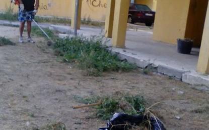 Vecinos de Virgen de la Luz limpian su zona, ya que no aparecen operarios municipales