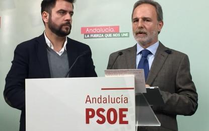 """""""La Zona Franca debe ser un espacio de creación de empleo y dejar de servir de herramienta propagandística del PP»"""