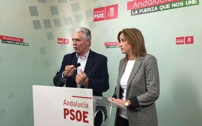 """Menacho acusa al subdelegado del Gobierno de actuar como  """"un comisario político en permanente campaña"""""""