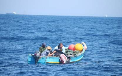 La Pesca y los lazos familiares marcan el comportamiento de las orcas del Estrecho