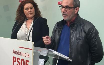 PSOE de Cádiz vaticina nuevas iniciativas de recuperación de la memoria histórica en la provincia avaladas por la Ley que aprobará el Parlamento andaluz