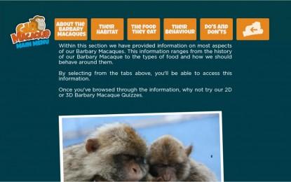 Ya puede descargarse la aplicación para Android sobre los macacos de Gibraltar
