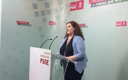 El PSOE anima a su militancia a participar en el Primero de Mayo para lanzar un grito contra la precariedad laboral y social