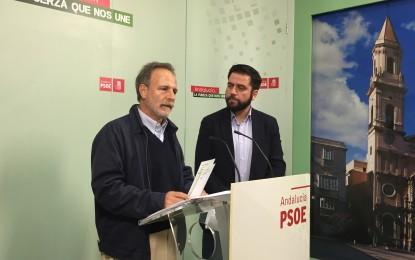 El PSOE eleva al Congreso una batería de iniciativas sobre la gestión de Zona Franca
