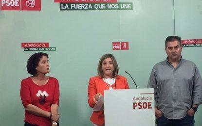 El PSOE traslada a UGT y CCOO propuestas tangibles aprobadas en el Congreso para reactivar la economía gaditana y emplaza a los demás partidos a comprometerse a realizarlas