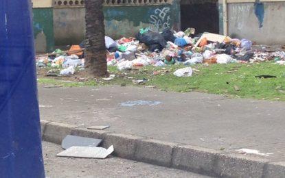 El Grupo Municipal Socialista exige responsabilidad a Juan Franco por la acumulación de basuras en Las Palomeras  que considera propia del tercer mundo y un peligro para la salud