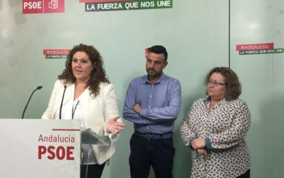 El PSOE destaca la aportación de colectivos LGTBI para completar la Ley sobre igualdad de trato