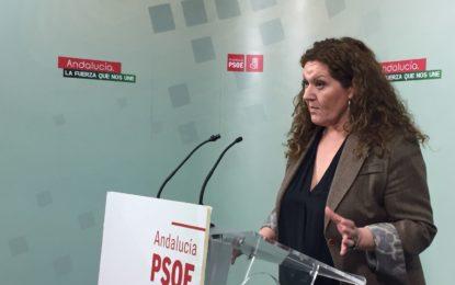 """""""El PP miente a la ciudadanía sobre el impuesto de sucesiones para favorecer a las grandes fortunas"""""""