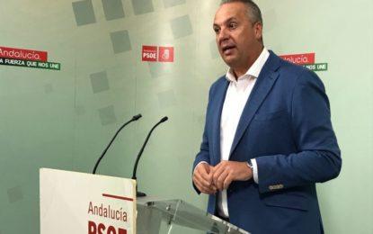 """Ruiz Boix: """"La provincia de Cádiz lleva casi un año esperando los 310 millones de euros para empleo que prometió la ministra Báñez"""""""