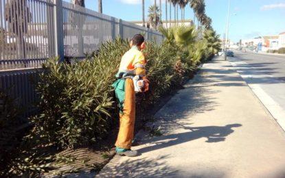 Parques y Jardines realiza trabajos de poda, limpieza, desbroce y aplicación de tratamientos fitosanitarios en varias zonas de la ciudad