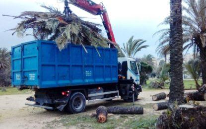 Parques y Jardines y Limpieza retiran del litoral y zonas ajardinadas  restos del temporal