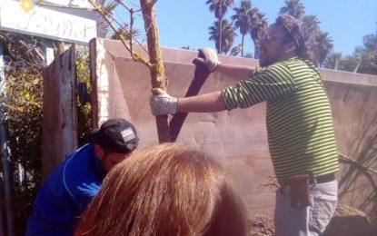Parques y Jardines colabora con la entrega de plantas a Los Locos del Parque
