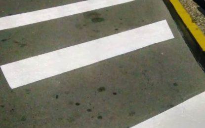 La concesionaria del servicio de autobuses inicia trabajos de pintado de las paradas
