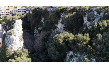 El Gobierno de Gibraltar proyecta la ampliación de la Reserva Natural del Peñón, lo que atestigua su firme compromiso con la protección medioambiental y la preservación de zonas verdes