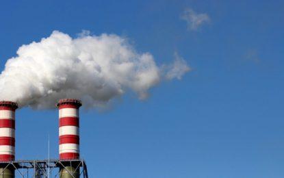 IU y Podemos La Línea piden hacer un plan de arbolado para luchar contra la contaminación