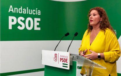 """El PSOE de Cádiz teme un Brexit """"salvaje a manos de Boris Johnson, después de haber soslayado al Parlamento británico en un ataque sin precedentes a la democracia""""."""