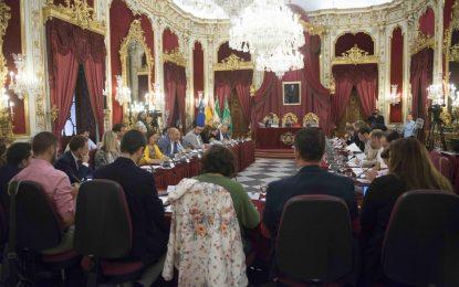 """El Pleno muestra su compromiso con el desarrollo sostenible y aprueba la declaración de """"emergencia climática"""""""