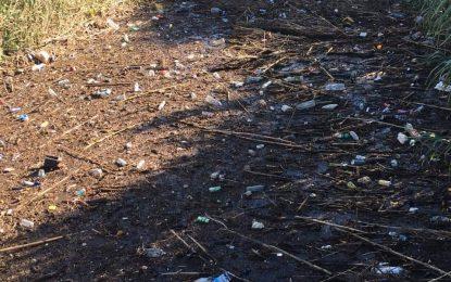 Verdemar Ecologistas en Acción denuncia la contaminación fluvial en el Arroyo Negros y Charcones