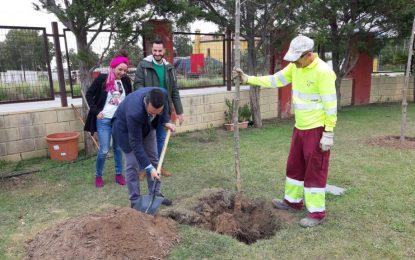La depuradora cuenta con un muro verde de trescientos árboles para mitigar el impacto visual y ambiental de la estación