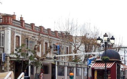Parques y Jardines retoma los trabajos de poda por distintas zonas de la ciudad