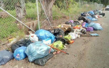 Verdemar Ecologistas en Acción pide compromiso social en materia de salubridad y civismo en La Línea