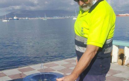 Mantenimiento Urbano sustituye fuentes bebedero del paseo marítimo de Poniente