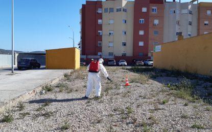 Iniciado la primera prueba de aplicación de herbicidas no contaminantes en la zona de Torrenueva
