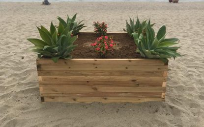 Ubicados nuevos maceteros en las playas para disminuir el impacto visual de los pozos de pluviales