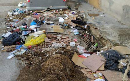Servicios extraordinarios para atajar situaciones incívicas de arroje de escombros