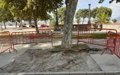 Mantenimiento Urbano realiza trabajos en las plazas Cruz Herrera y Camarón