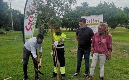El Ayuntamiento y Socibus plantan cinco alcornoques en el Parque Princesa Sofía en la Semana Europea de la  Movilidad