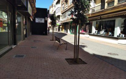 Acometida la plantación de nuevos árboles en la calle San Pablo, incluida en el proyecto de peatonalización del vial