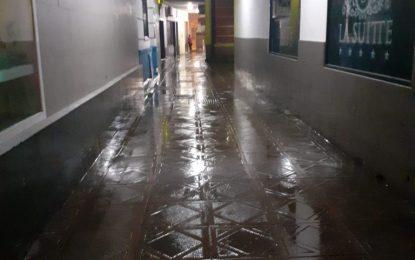 Limpieza ha desarrollado hoy los trabajos de desinfección en la zona centro