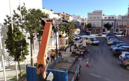 Mantenimiento Urbano ejecuta trabajos de sustitución y reparación de luminarias en la zona centro de la ciudad