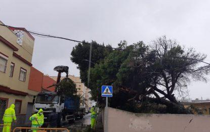 El Ayuntamiento mantendrá activado hoy el dispositivo extraordinario de asistencia por  las lluvias